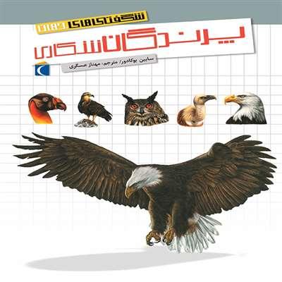 شگفتی های جهان  پرندگان شکاری