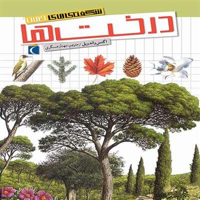 شگفتی های جهان  درخت ها